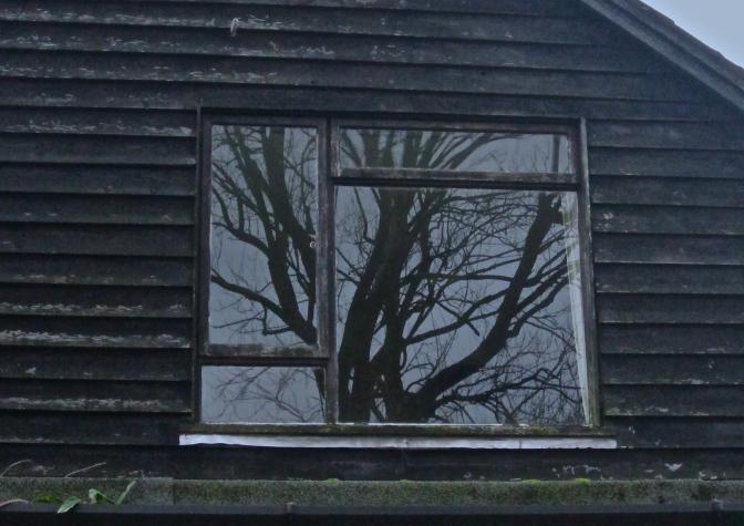prues-bedroom-window-img_2902